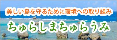 美しい島を守るために環境への取り組み